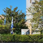 Pfizer Αθήνα - Pfizer Athens - Thelcon