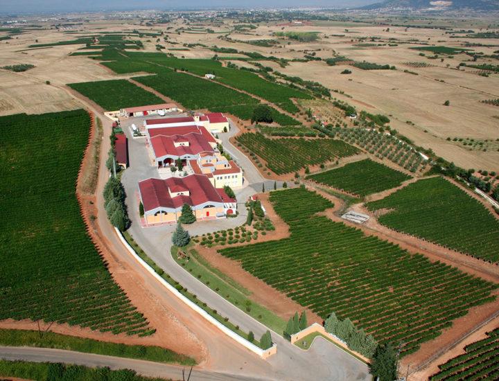Οινοποιείο Κώστα Λαζαρίδη - Domaine Costa Lazaridi - Thelcon